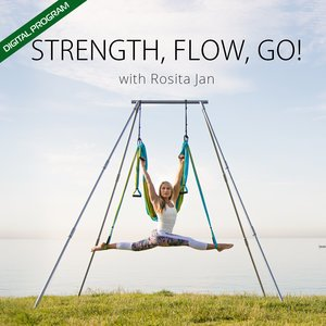 STRENGTH FLOW GO! Video - ONLINE PROGRAM with FREE PDF Pose Chart